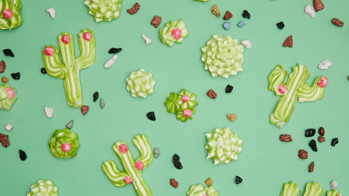 Rosie bakes up a batch of adorable cactus-shaped cookies.